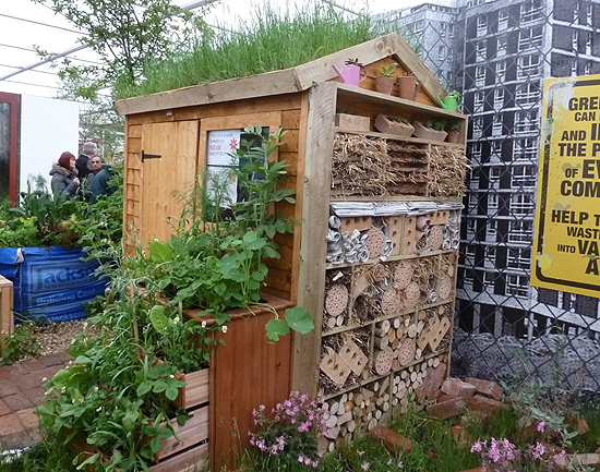 Groundwork Garden Shed at Chelsea Flower Show 2013