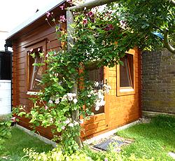Log Cabin in Summer